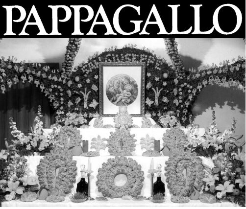 Pappagallo – Spring 2016 Issue